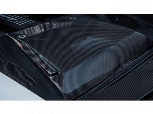 Novitec Huracan carbon fiber engine compartment cover L6 222 45 | Torrent Motorworks